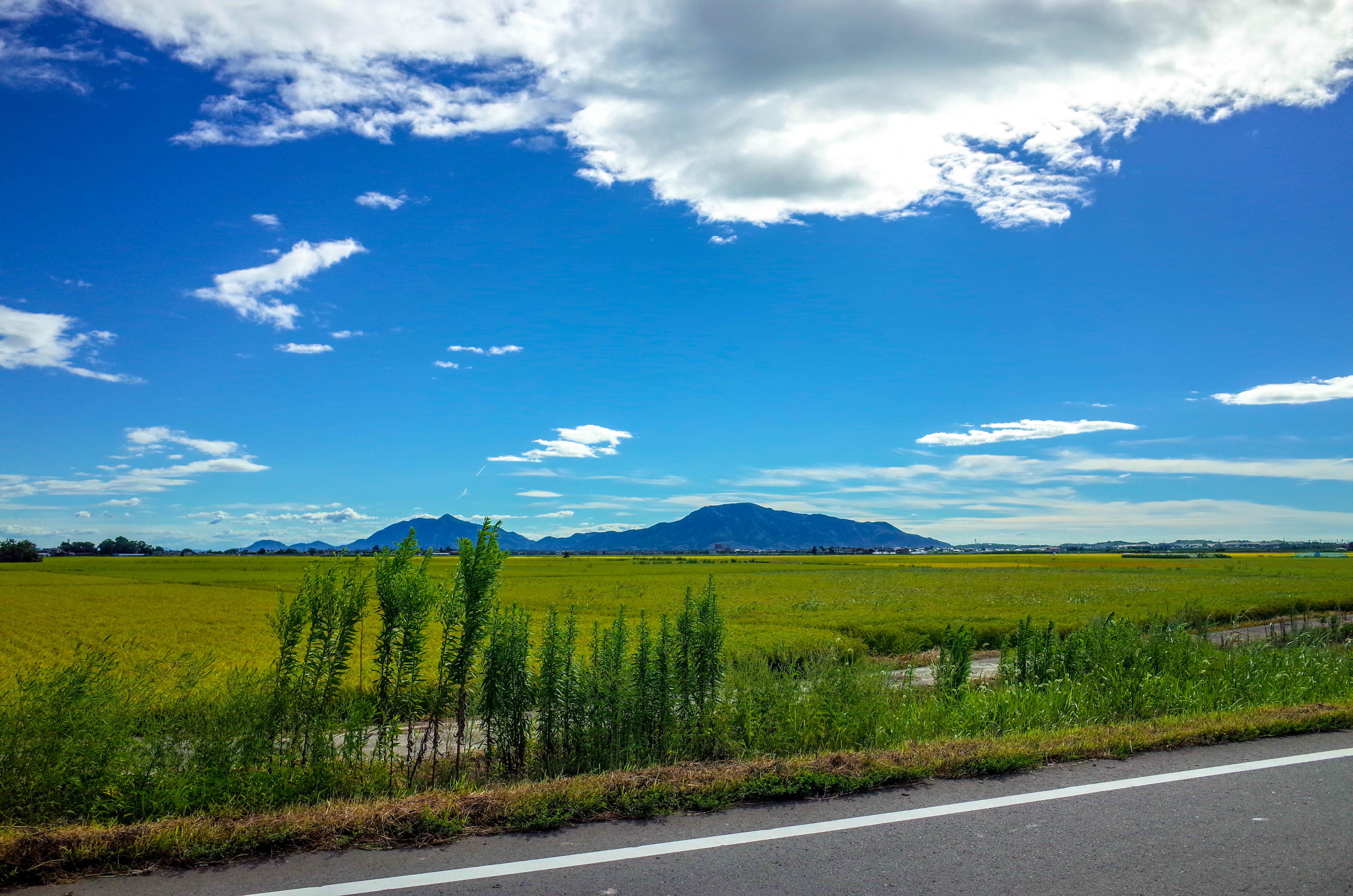 間違いなく新潟は第二の故郷です。本当にありがとうございました。
